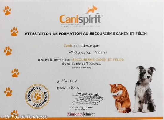 Attestation de formation au secourisme canin et felin