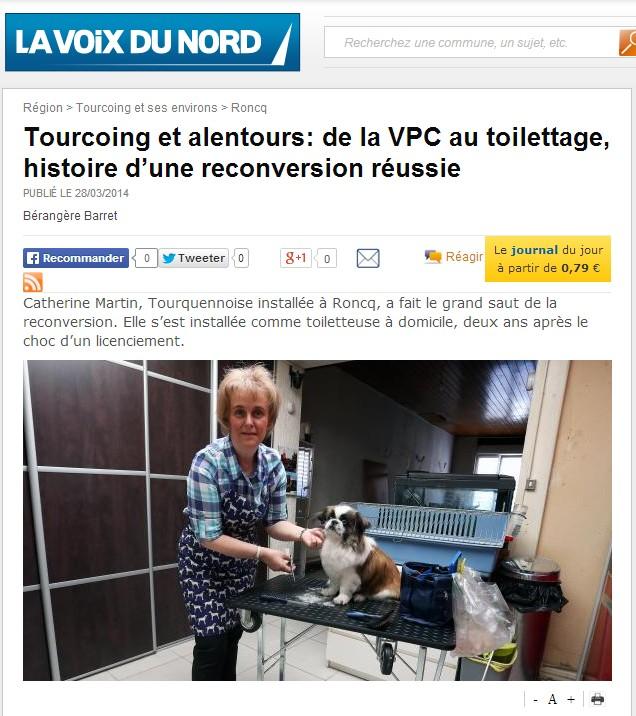 copie ecran lavoixdunord.fr